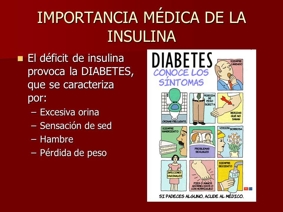 IMPORTANCIA MÉDICA DE LA INSULINA