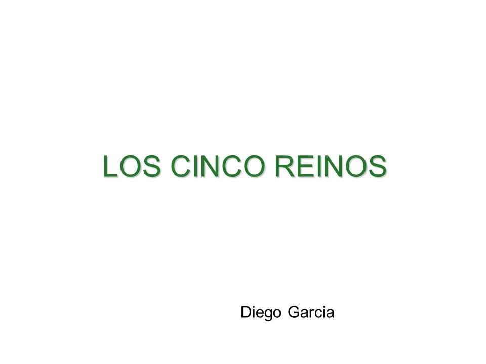 LOS CINCO REINOS Diego Garcia Santillana