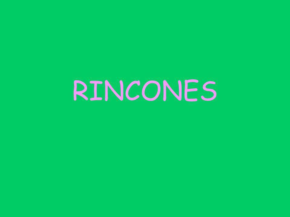 RINCONES