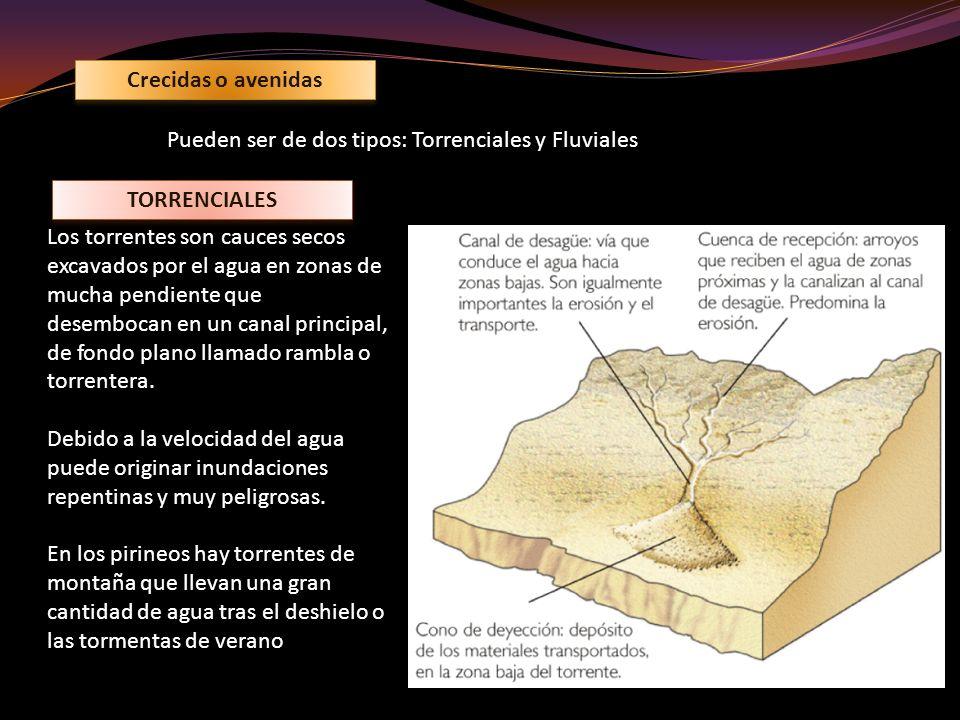 Crecidas o avenidas Pueden ser de dos tipos: Torrenciales y Fluviales. TORRENCIALES.