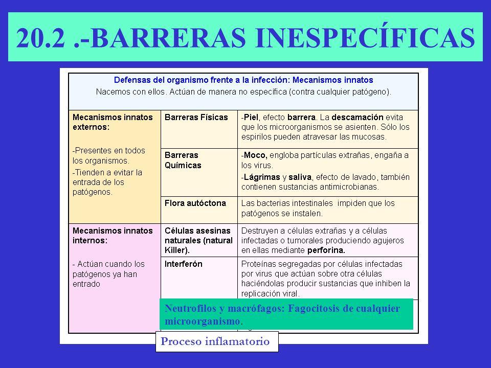 20.2 .-BARRERAS INESPECÍFICAS