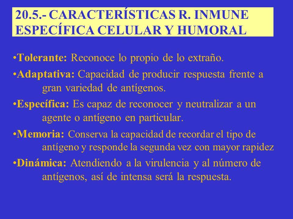 20.5.- CARACTERÍSTICAS R. INMUNE ESPECÍFICA CELULAR Y HUMORAL