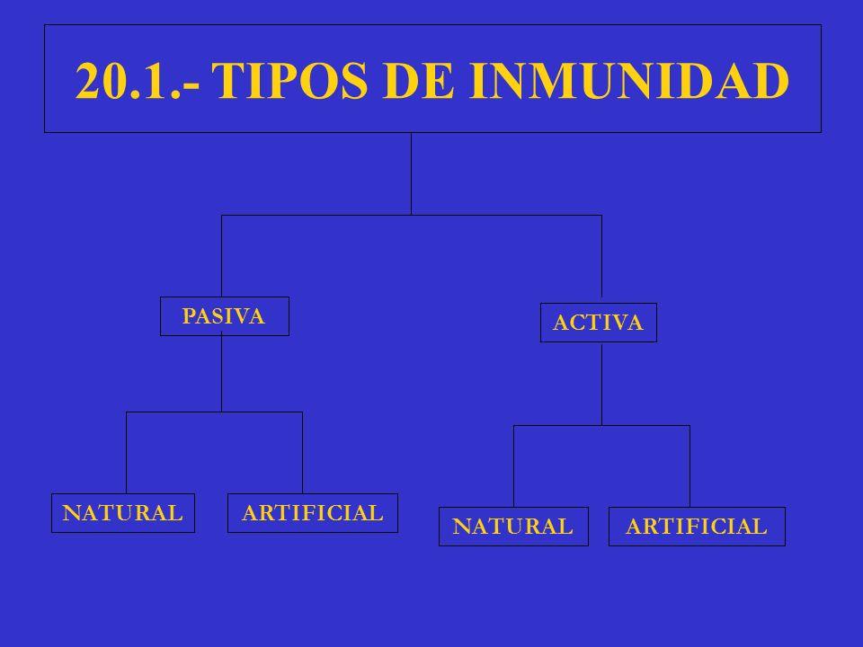 20.1.- TIPOS DE INMUNIDAD PASIVA ACTIVA NATURAL ARTIFICIAL NATURAL