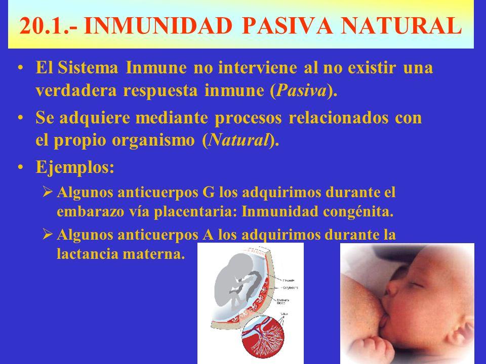 20.1.- INMUNIDAD PASIVA NATURAL