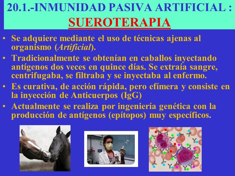 20.1.-INMUNIDAD PASIVA ARTIFICIAL : SUEROTERAPIA