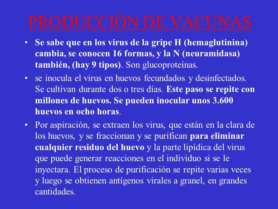 PRODUCCIÓN DE VACUNAS