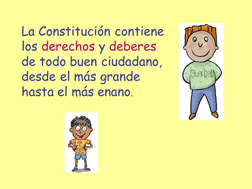 La Constitución contiene
