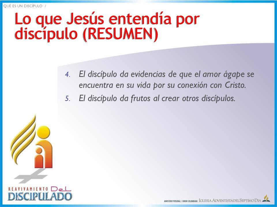 Lo que Jesús entendía por discípulo (RESUMEN)