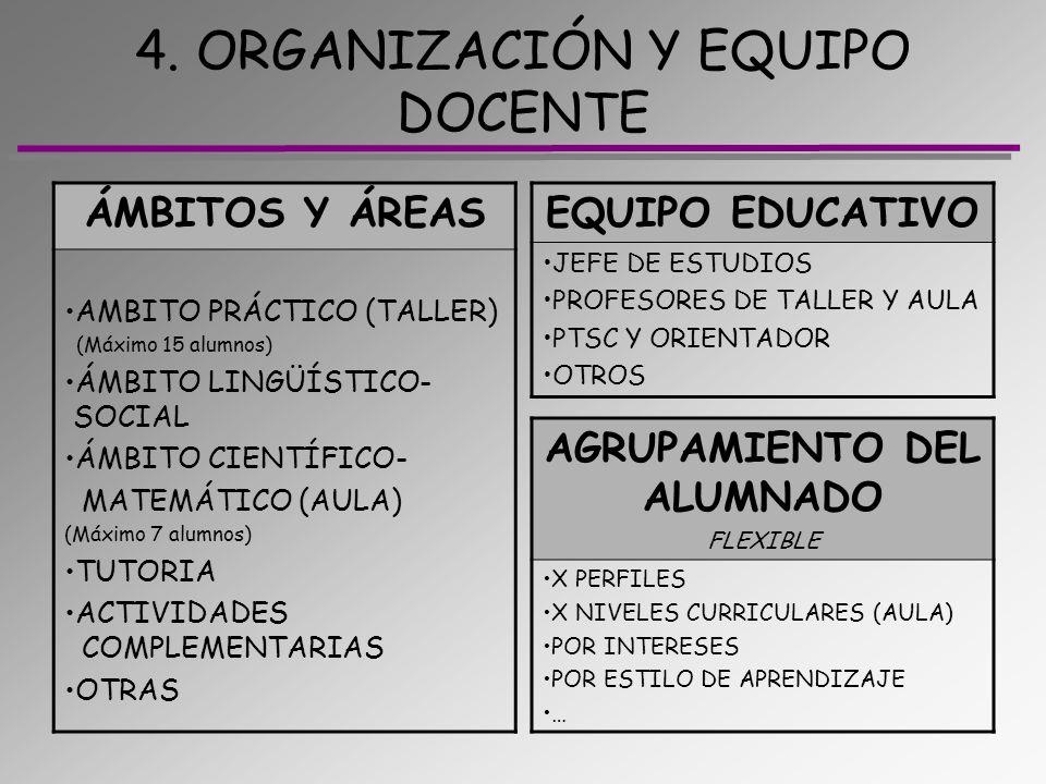 4. ORGANIZACIÓN Y EQUIPO DOCENTE