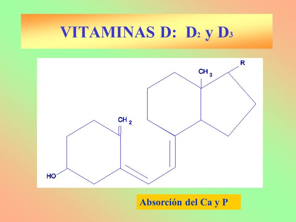 VITAMINAS D: D2 y D3 Absorción del Ca y P