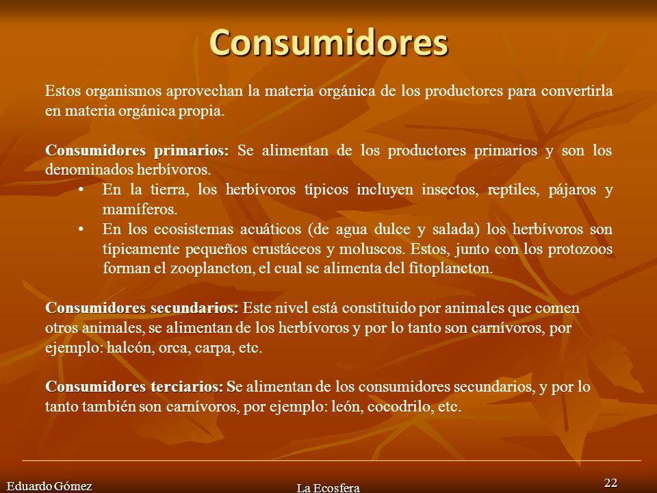 Consumidores Estos organismos aprovechan la materia orgánica de los productores para convertirla en materia orgánica propia.