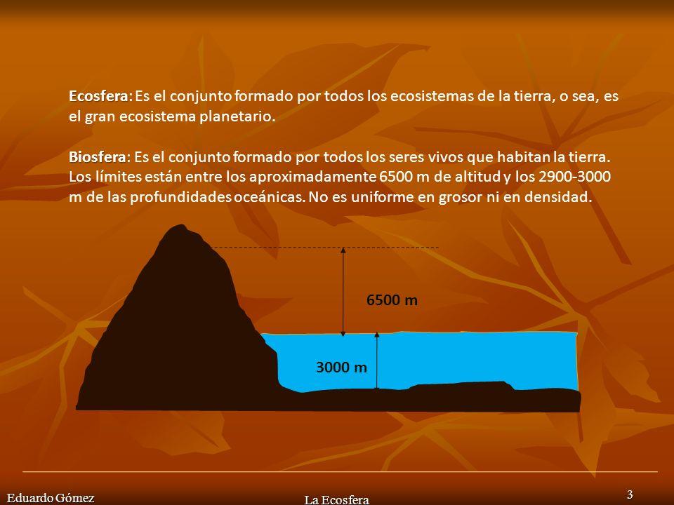 Ecosfera: Es el conjunto formado por todos los ecosistemas de la tierra, o sea, es el gran ecosistema planetario.