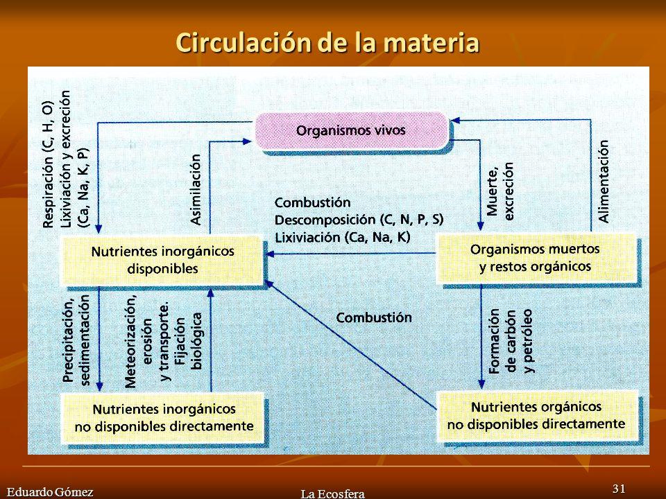 Circulación de la materia