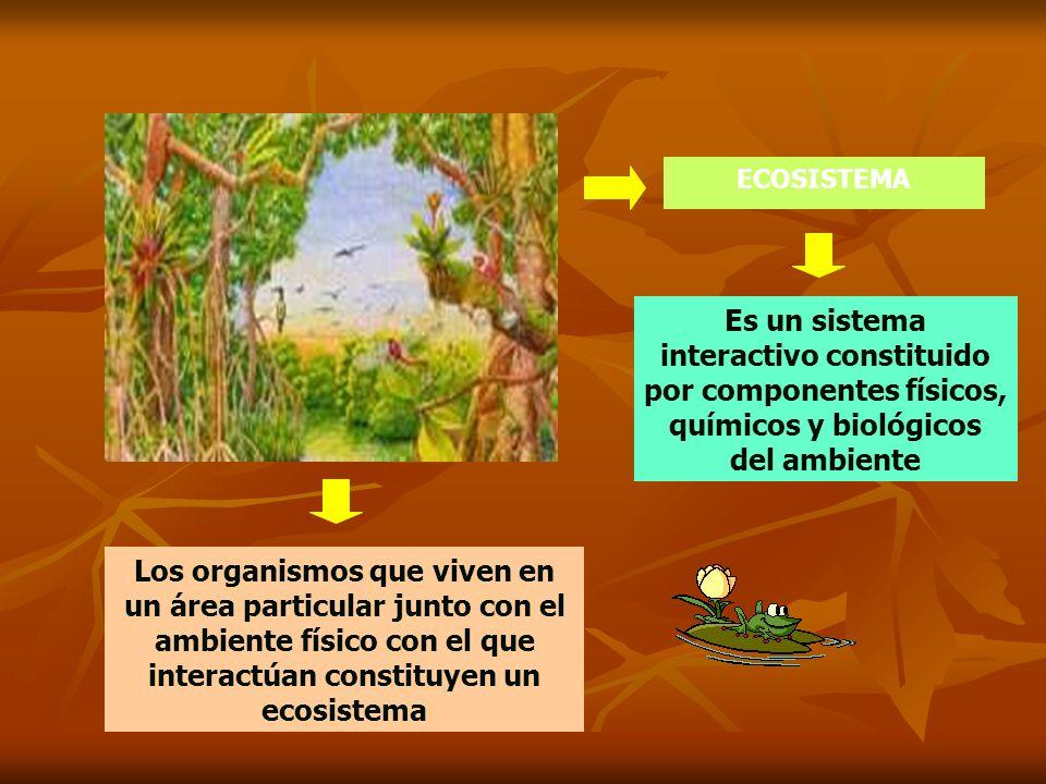 ECOSISTEMAEs un sistema interactivo constituido por componentes físicos, químicos y biológicos del ambiente.
