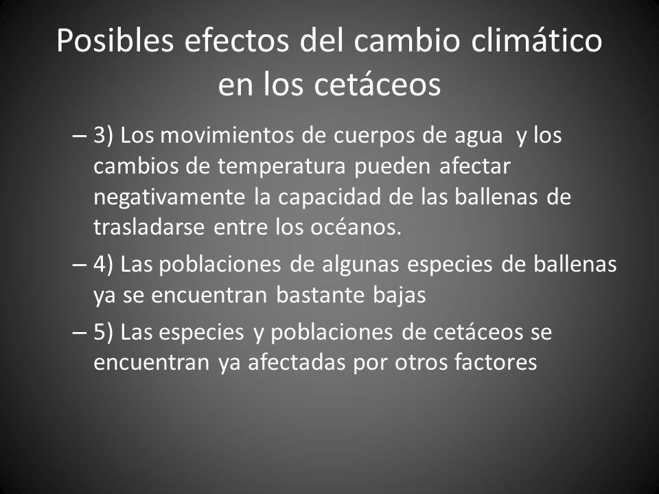 Posibles efectos del cambio climático en los cetáceos