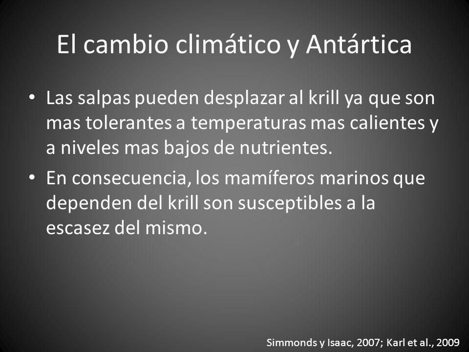 El cambio climático y Antártica
