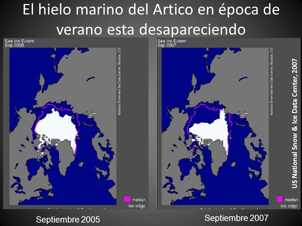 El hielo marino del Artico en época de verano esta desapareciendo