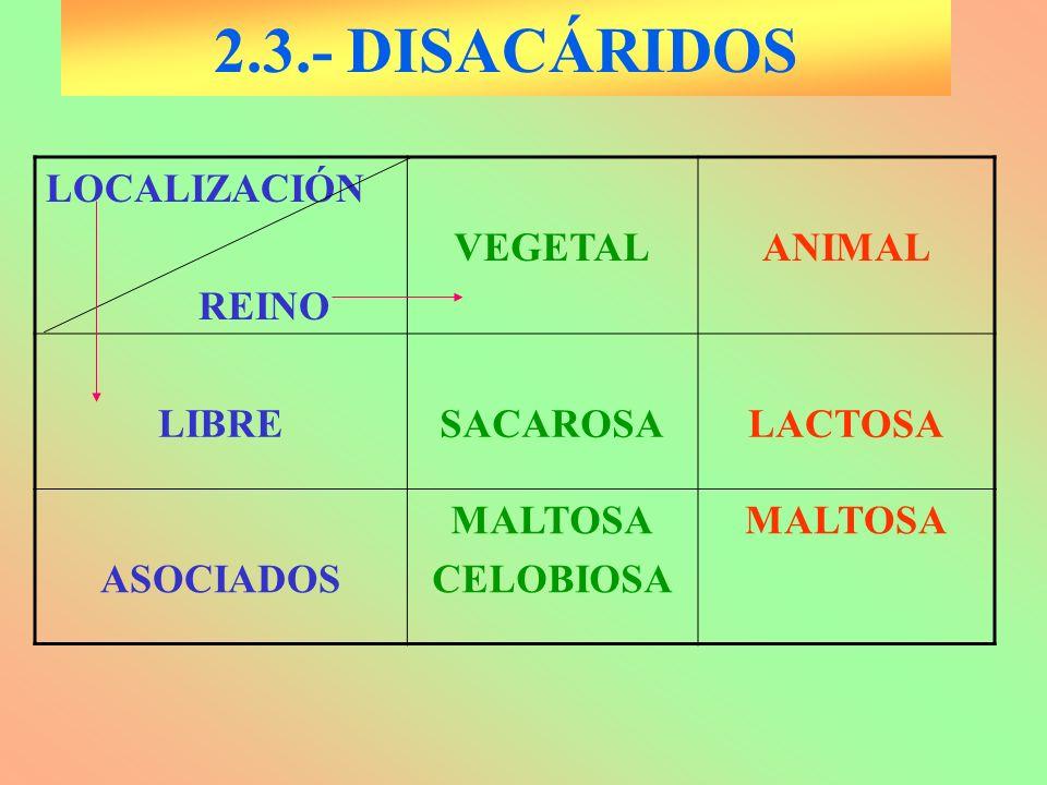 2.3.- DISACÁRIDOS LOCALIZACIÓN REINO VEGETAL ANIMAL LIBRE SACAROSA
