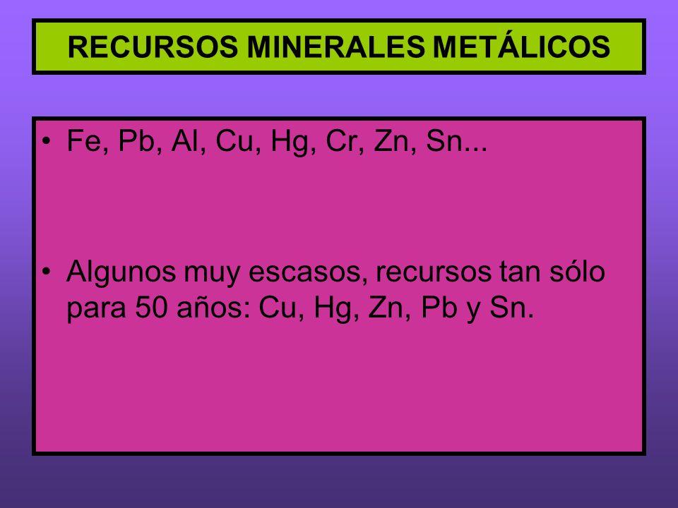 RECURSOS MINERALES METÁLICOS