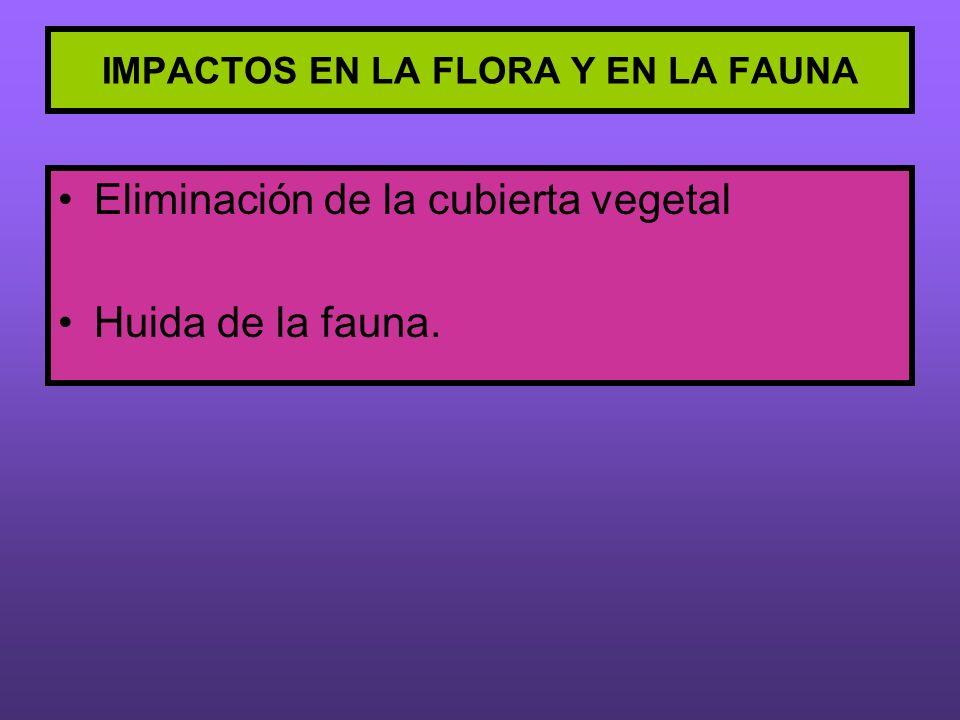 IMPACTOS EN LA FLORA Y EN LA FAUNA