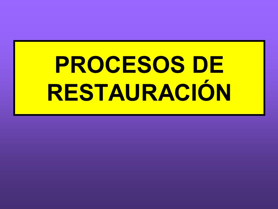 PROCESOS DE RESTAURACIÓN