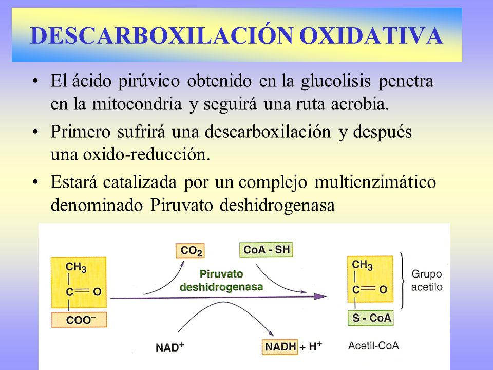 DESCARBOXILACIÓN OXIDATIVA