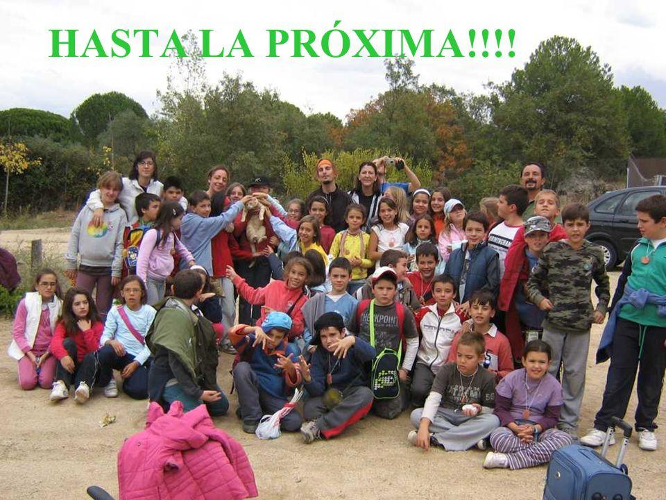 HASTA LA PRÓXIMA!!!!