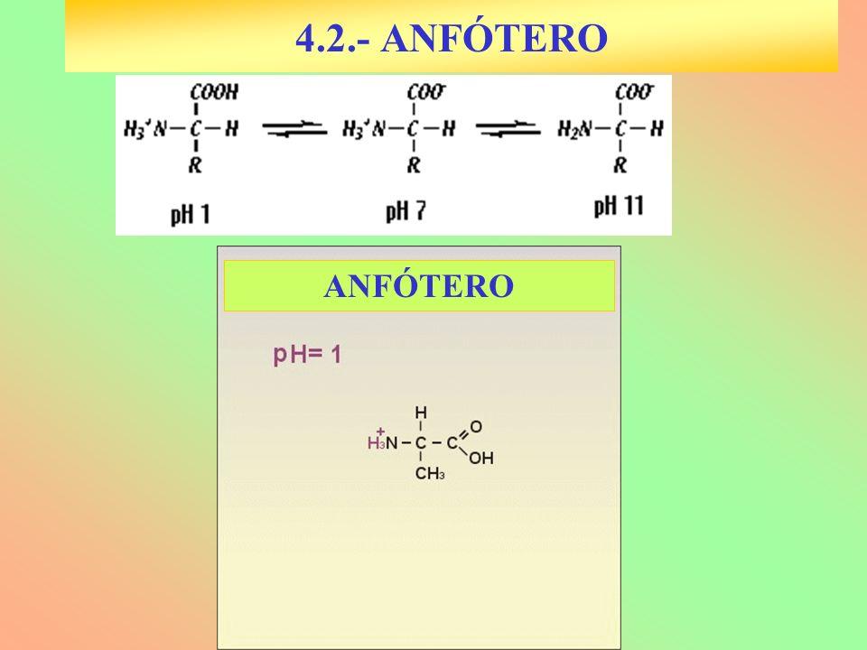 4.2.- ANFÓTERO ANFÓTERO