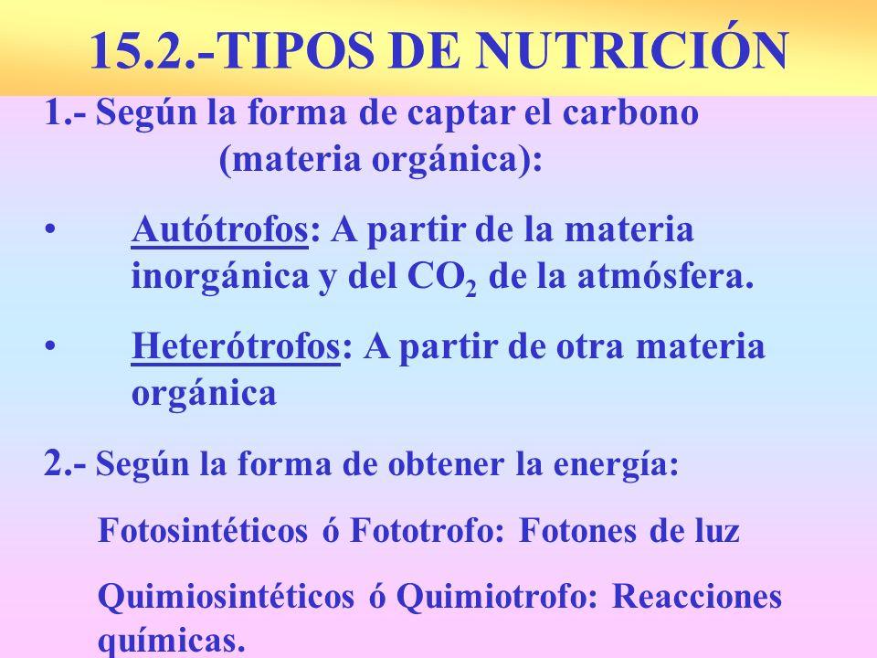15.2.-TIPOS DE NUTRICIÓN 1.- Según la forma de captar el carbono (materia orgánica):