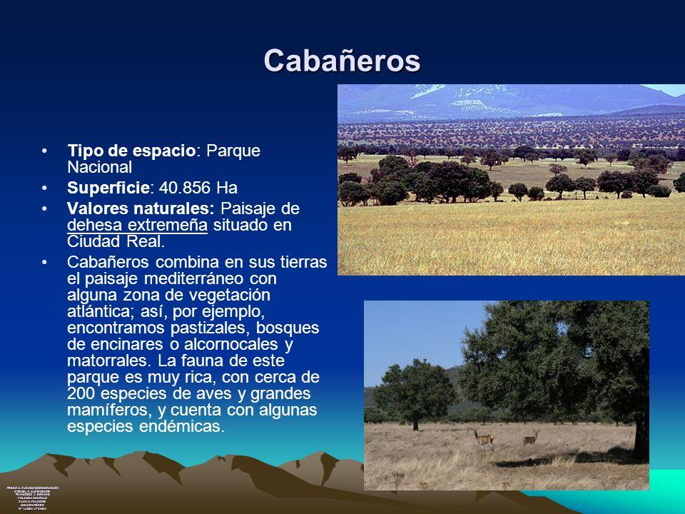 Cabañeros Tipo de espacio: Parque Nacional Superficie: 40.856 Ha