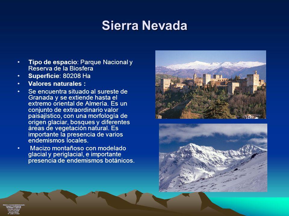 Sierra Nevada Tipo de espacio: Parque Nacional y Reserva de la Biosfera. Superficie: 80208 Ha. Valores naturales :