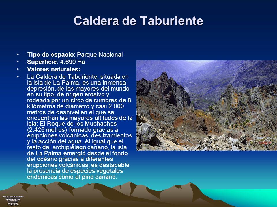 Caldera de Taburiente Tipo de espacio: Parque Nacional
