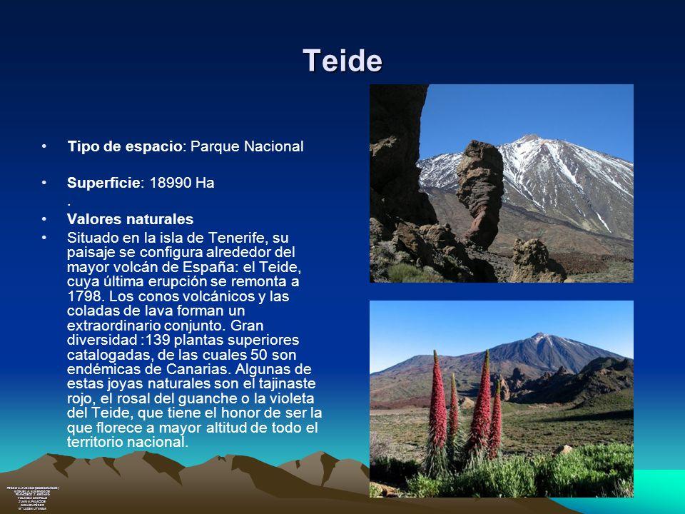 Teide Tipo de espacio: Parque Nacional Superficie: 18990 Ha .