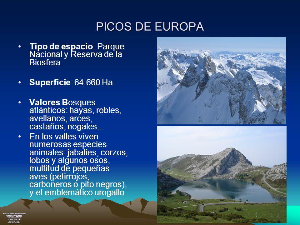 PICOS DE EUROPA Tipo de espacio: Parque Nacional y Reserva de la Biosfera. Superficie: 64.660 Ha.