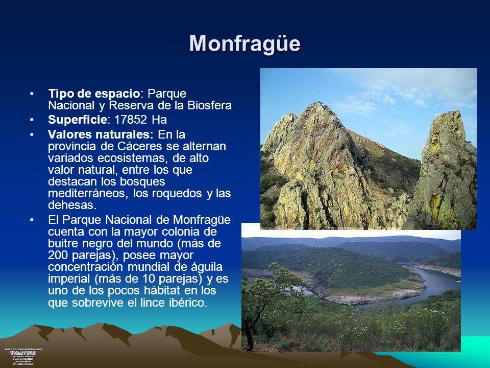 Monfragüe Tipo de espacio: Parque Nacional y Reserva de la Biosfera