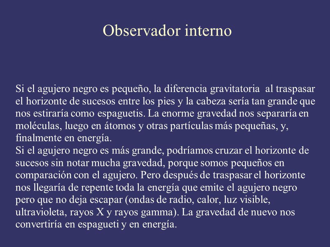 Observador interno