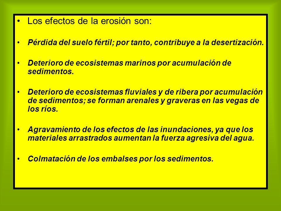 Los efectos de la erosión son: