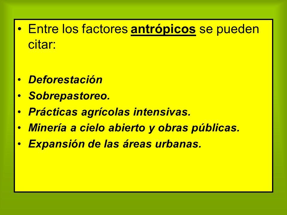 Entre los factores antrópicos se pueden citar: