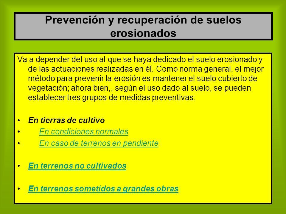 Prevención y recuperación de suelos erosionados