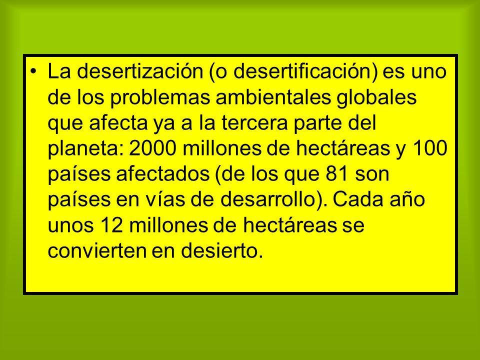 La desertización (o desertificación) es uno de los problemas ambientales globales que afecta ya a la tercera parte del planeta: 2000 millones de hectáreas y 100 países afectados (de los que 81 son países en vías de desarrollo).