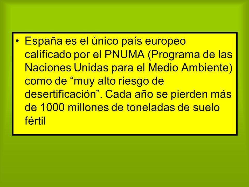España es el único país europeo calificado por el PNUMA (Programa de las Naciones Unidas para el Medio Ambiente) como de muy alto riesgo de desertificación .