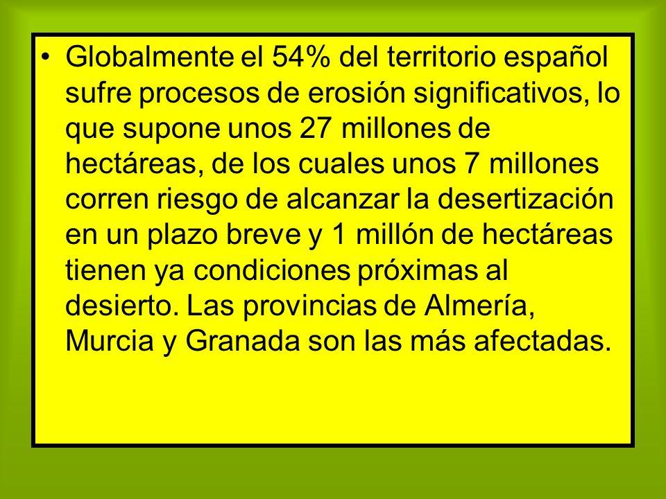 Globalmente el 54% del territorio español sufre procesos de erosión significativos, lo que supone unos 27 millones de hectáreas, de los cuales unos 7 millones corren riesgo de alcanzar la desertización en un plazo breve y 1 millón de hectáreas tienen ya condiciones próximas al desierto.
