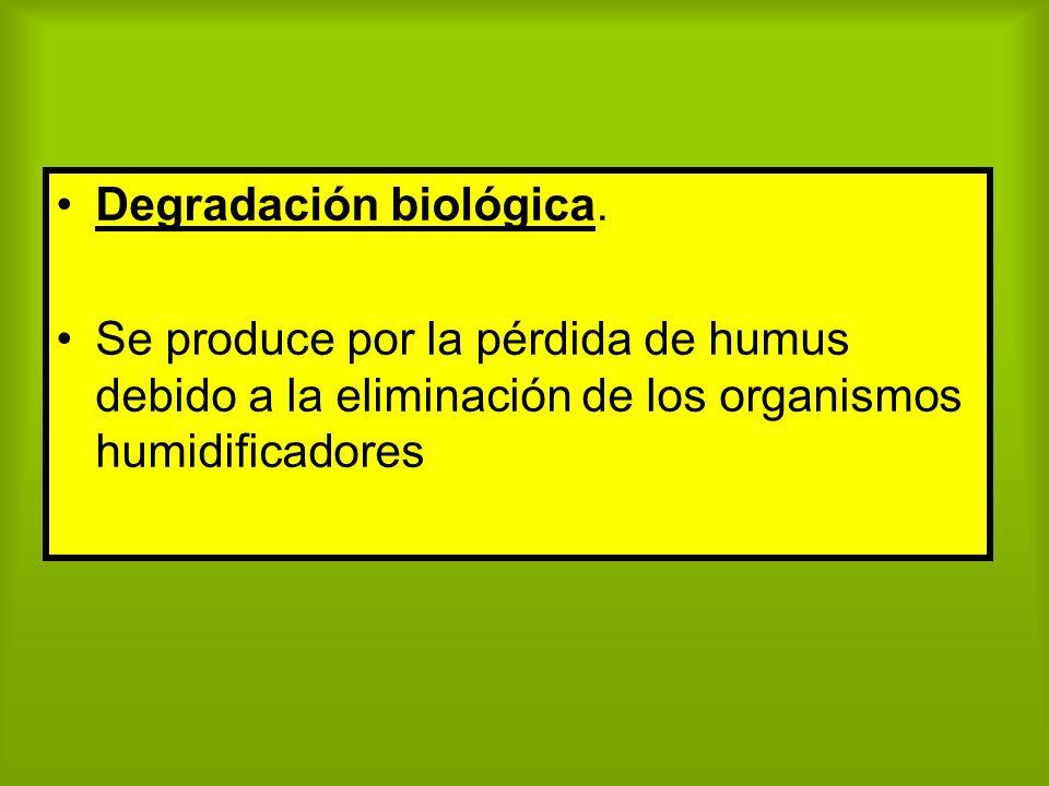 Degradación biológica.