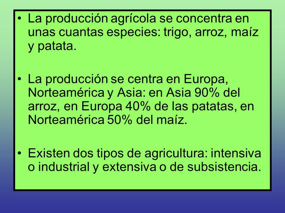 La producción agrícola se concentra en unas cuantas especies: trigo, arroz, maíz y patata.