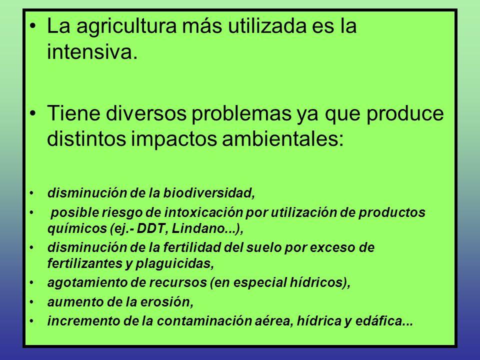 La agricultura más utilizada es la intensiva.