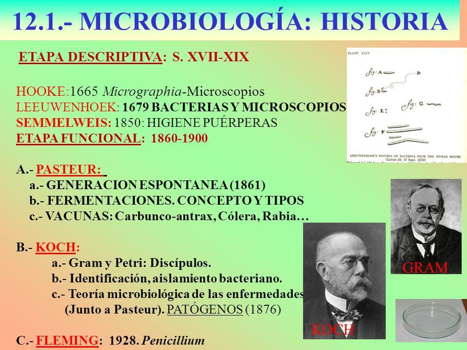 12.1.- MICROBIOLOGÍA: HISTORIA