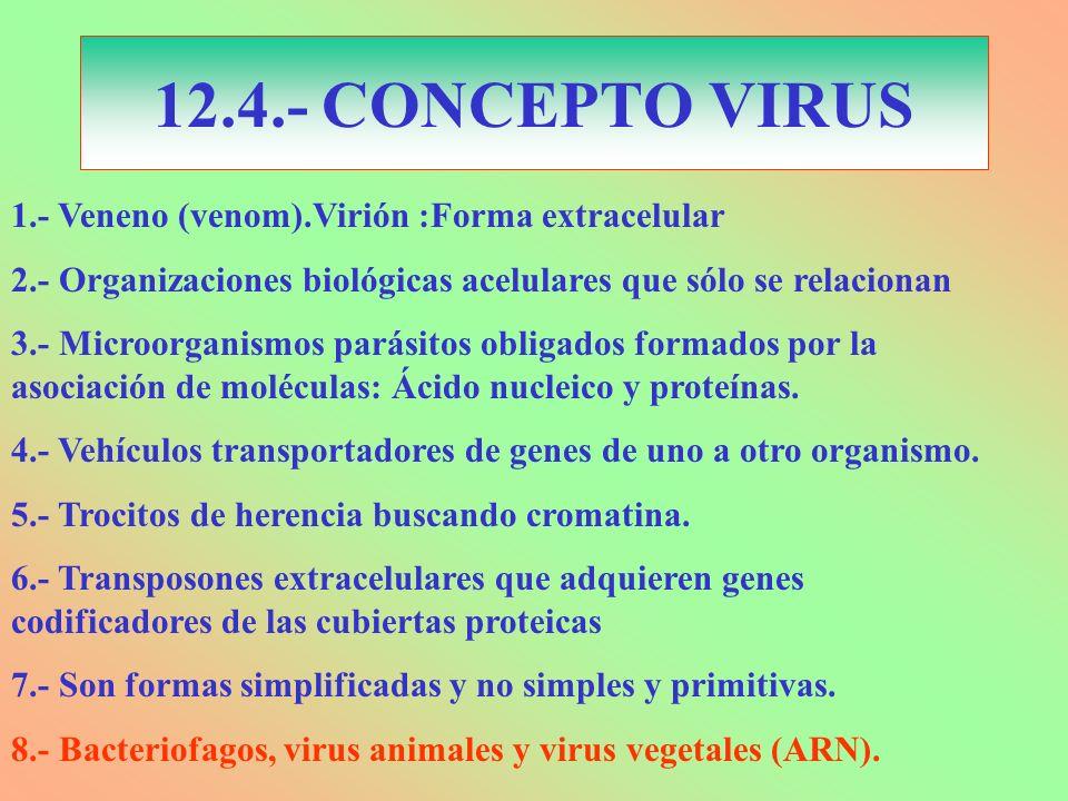 12.4.- CONCEPTO VIRUS 1.- Veneno (venom).Virión :Forma extracelular