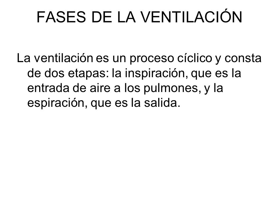 FASES DE LA VENTILACIÓN