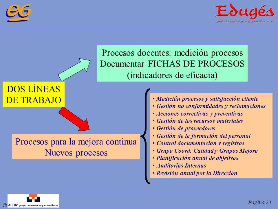 Procesos docentes: medición procesos Documentar FICHAS DE PROCESOS