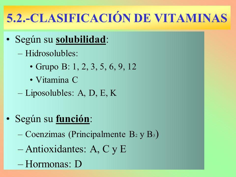 5.2.-CLASIFICACIÓN DE VITAMINAS